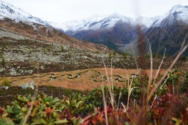 muschio_montagne